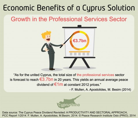 PROFESSIONAL SERVICES SECTOR IN A UNITED CYPRUS